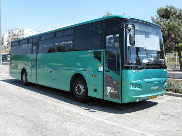 Daf - 50 BUSES FOR SALE
